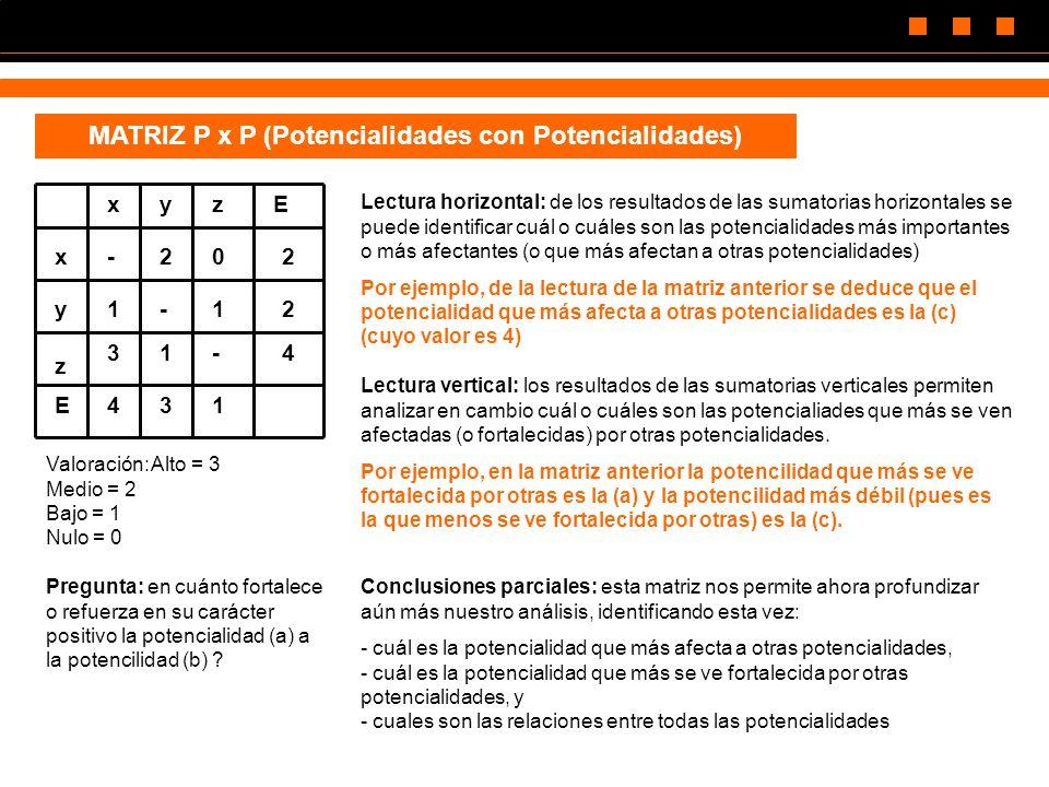 MATRIZ P x P (Potencialidades con Potencialidades)