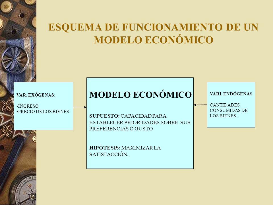ESQUEMA DE FUNCIONAMIENTO DE UN MODELO ECONÓMICO