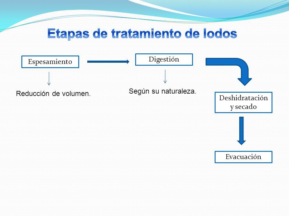 Etapas de tratamiento de lodos