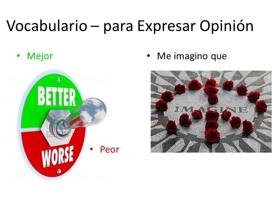 Vocabulario – para Expresar Opinión