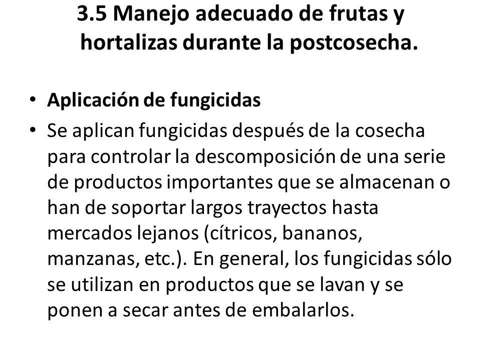 3.5 Manejo adecuado de frutas y hortalizas durante la postcosecha.