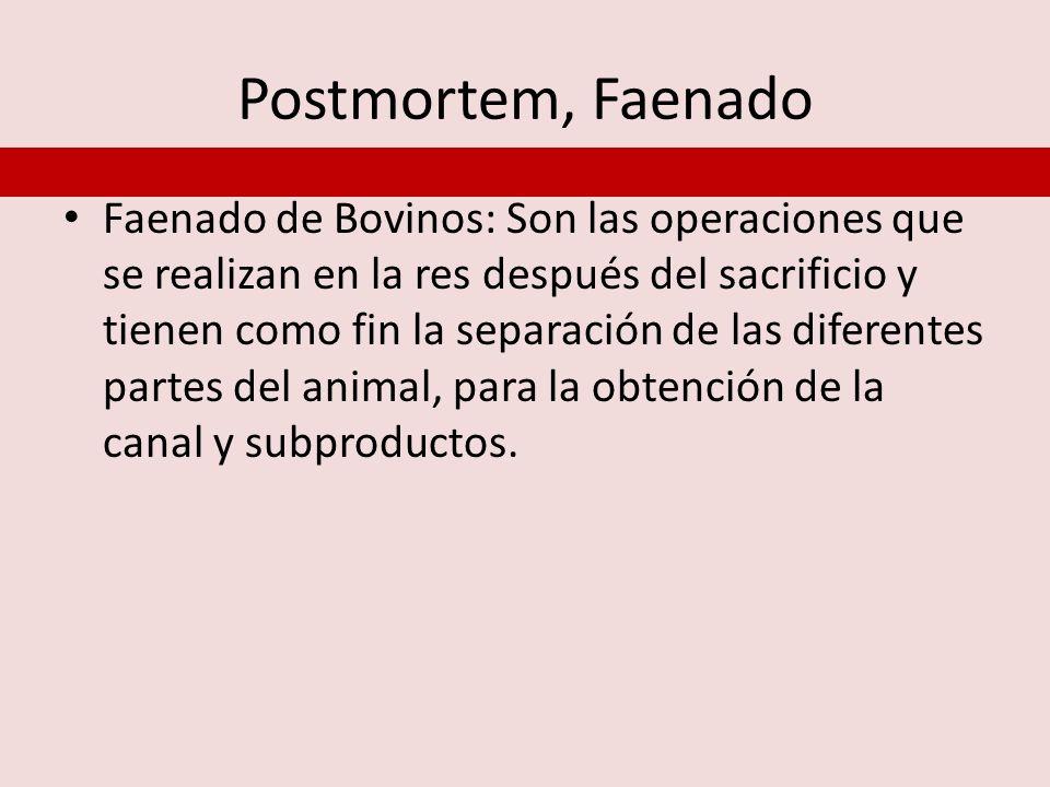 Postmortem, Faenado