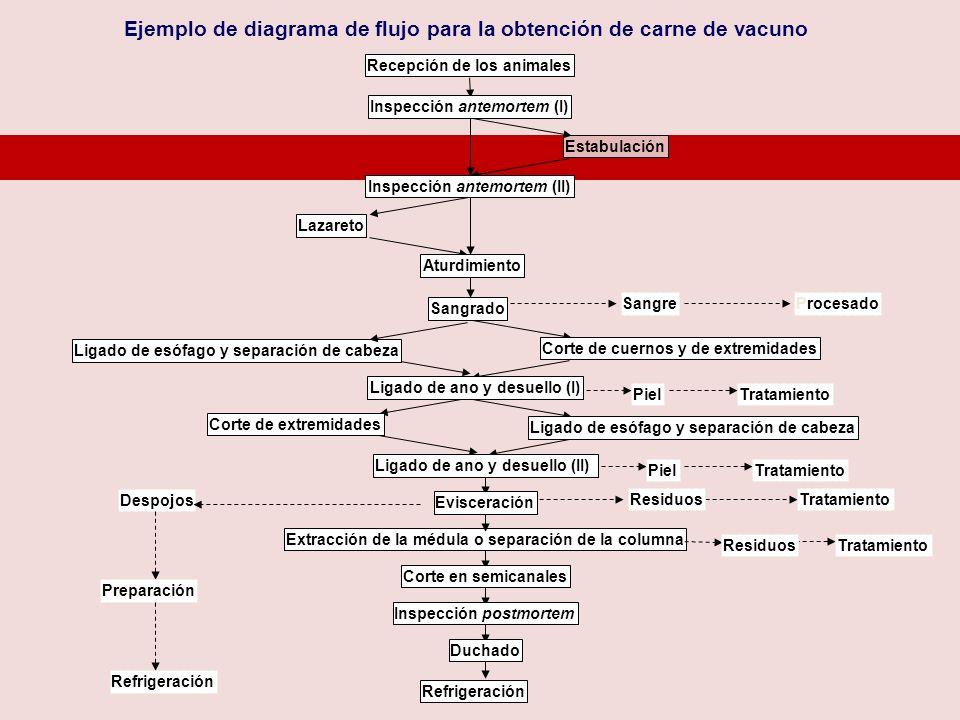 Ejemplo de diagrama de flujo para la obtención de carne de vacuno