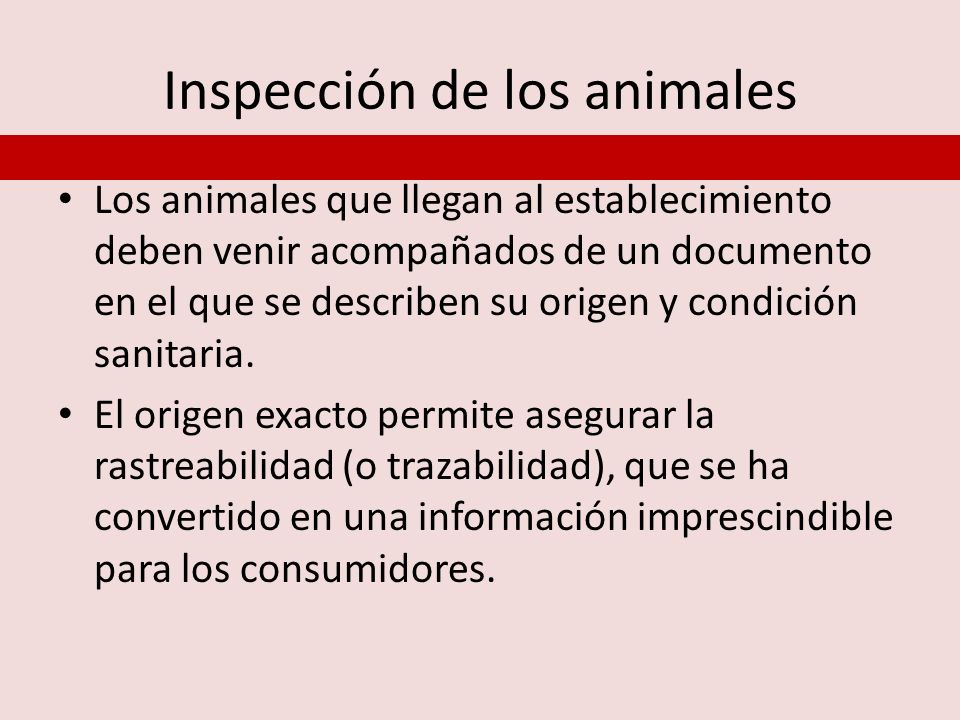 Inspección de los animales