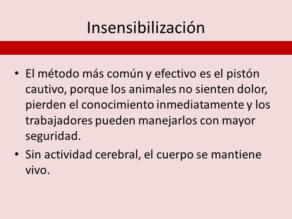 Insensibilización