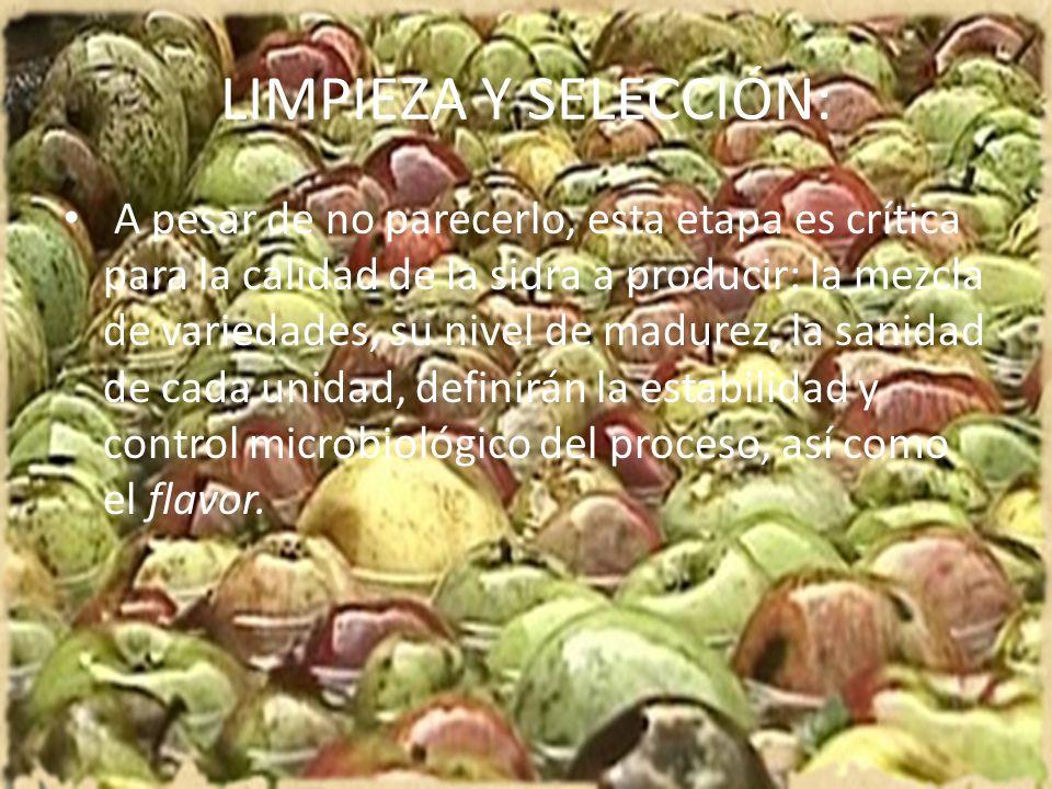 LIMPIEZA Y SELECCIÓN: