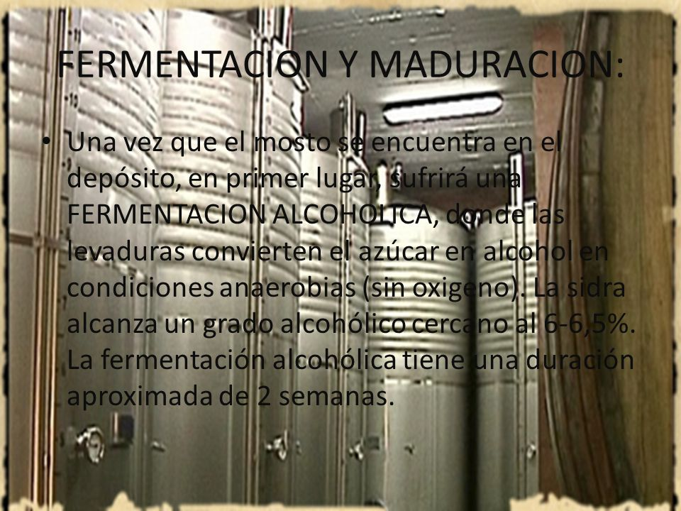 FERMENTACION Y MADURACION: