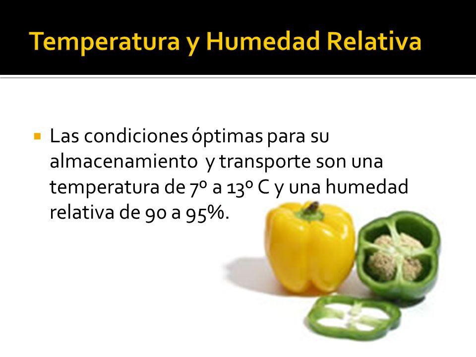Temperatura y Humedad Relativa