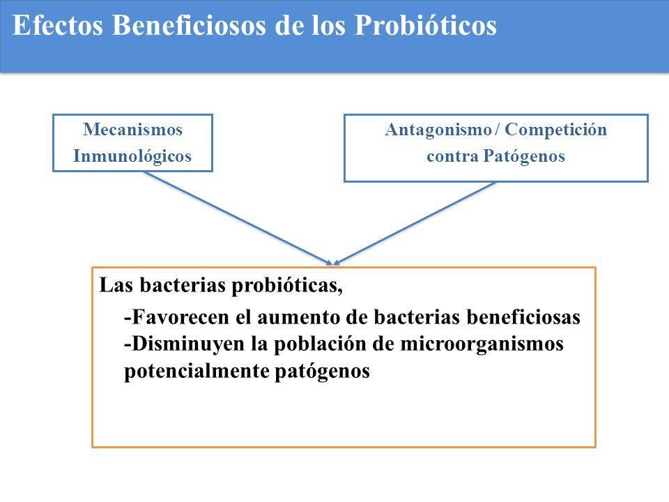 Efectos Beneficiosos de los Probióticos