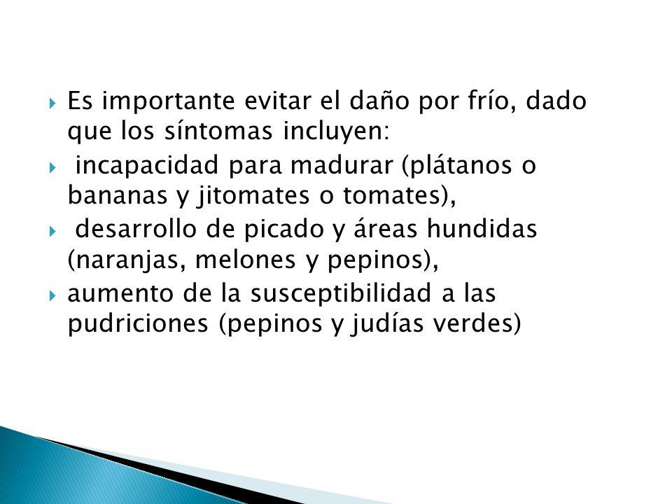 Es importante evitar el daño por frío, dado que los síntomas incluyen: