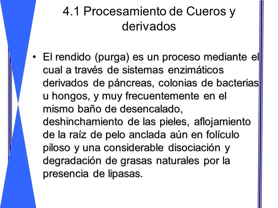 4.1 Procesamiento de Cueros y derivados