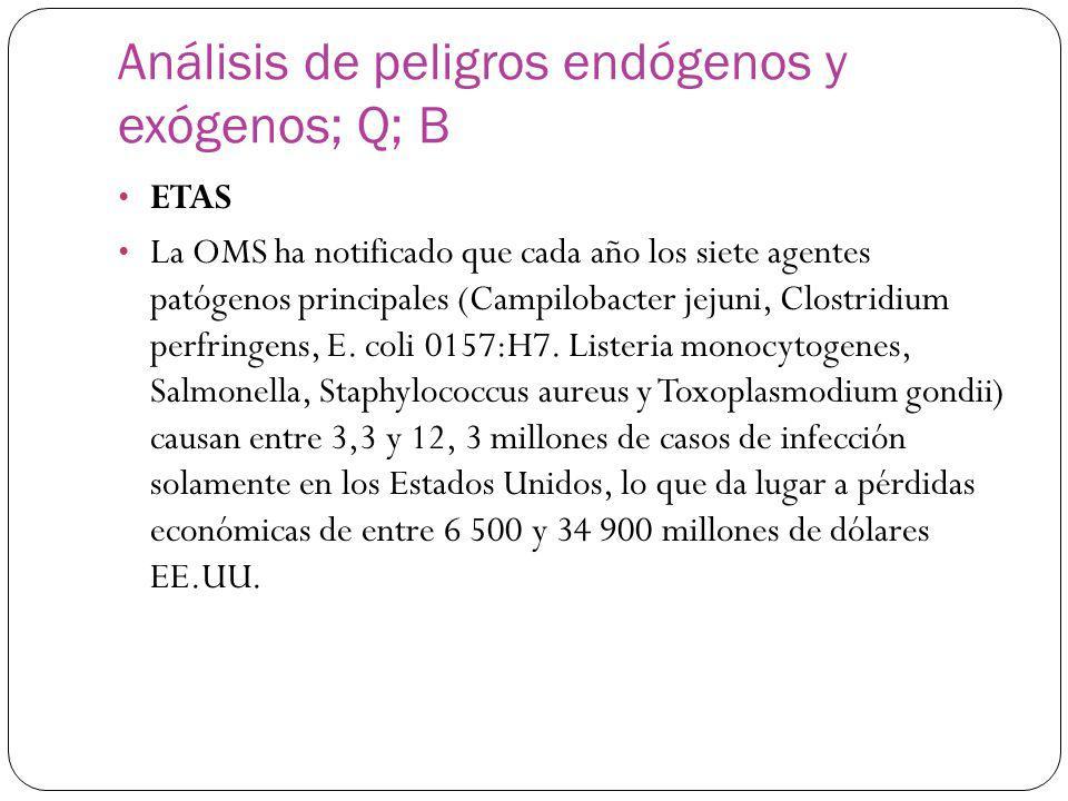 Análisis de peligros endógenos y exógenos; Q; B