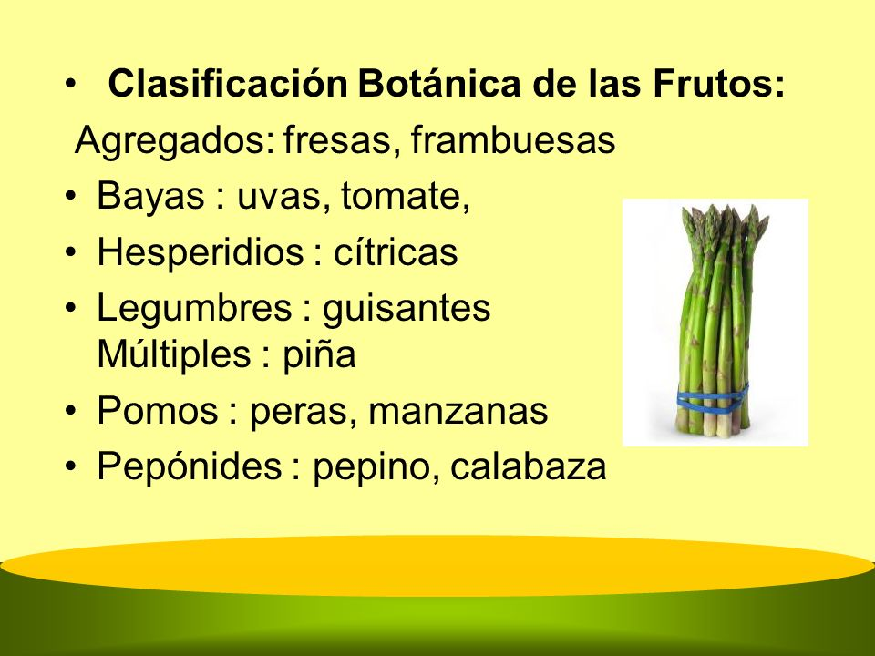 Clasificación Botánica de las Frutos: