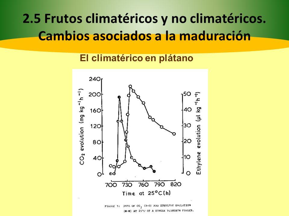2. 5 Frutos climatéricos y no climatéricos