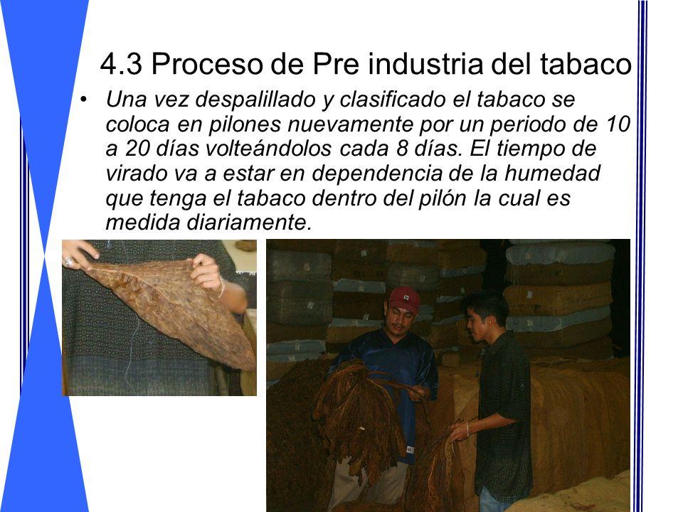 4.3 Proceso de Pre industria del tabaco