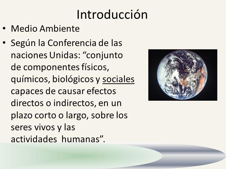 Introducción Medio Ambiente