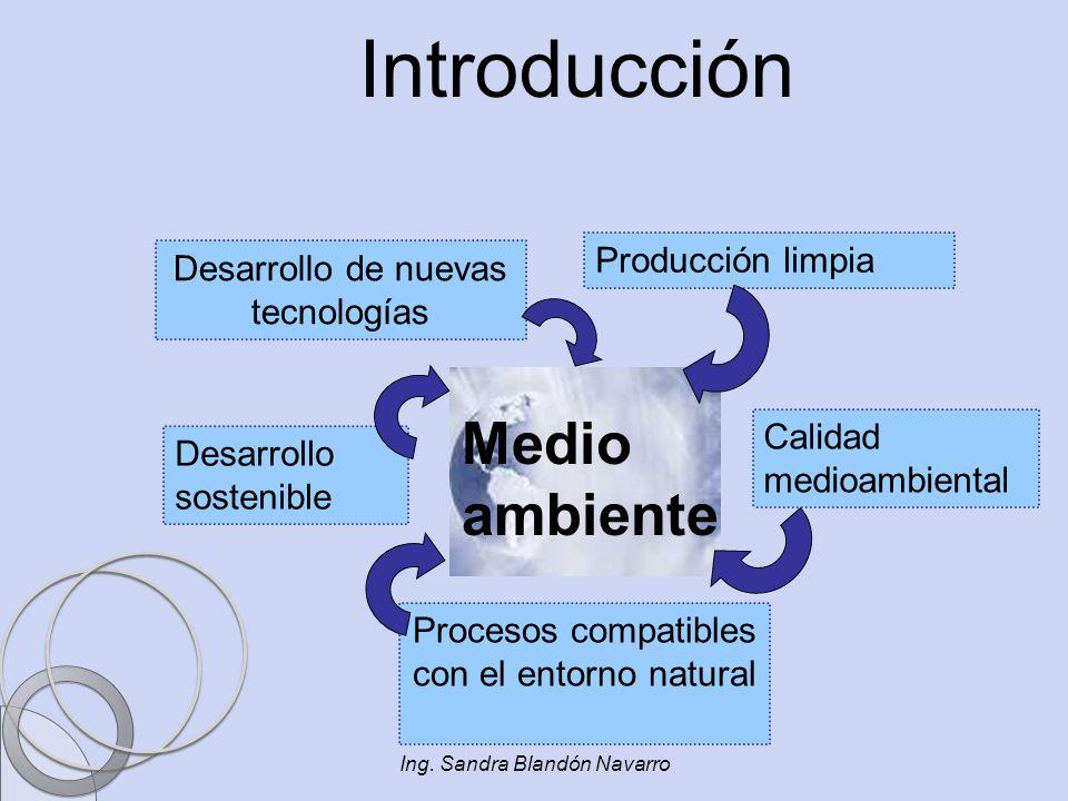 Introducción Medio ambiente Producción limpia
