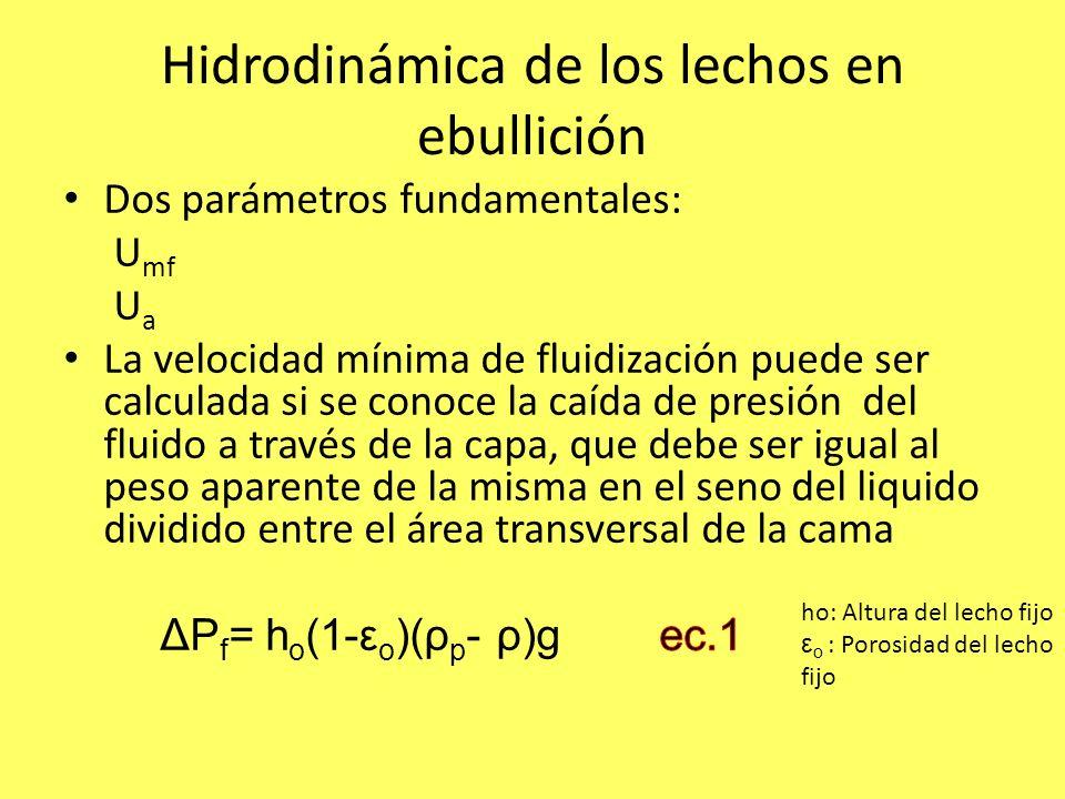 Hidrodinámica de los lechos en ebullición