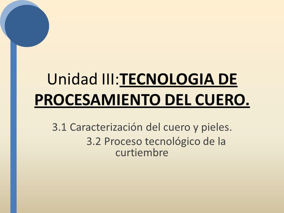 Unidad III:TECNOLOGIA DE PROCESAMIENTO DEL CUERO.