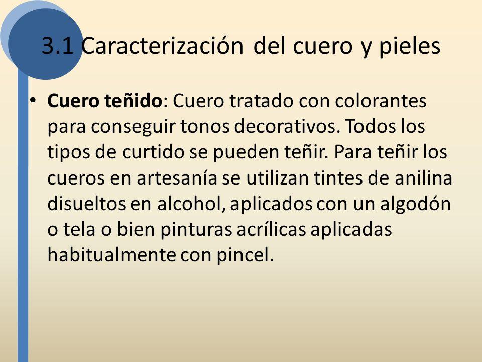 3.1 Caracterización del cuero y pieles