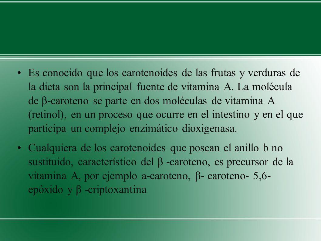 Es conocido que los carotenoides de las frutas y verduras de la dieta son la principal fuente de vitamina A. La molécula de β-caroteno se parte en dos moléculas de vitamina A (retinol), en un proceso que ocurre en el intestino y en el que participa un complejo enzimático dioxigenasa.