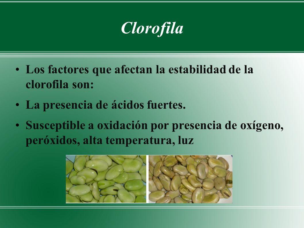 Clorofila Los factores que afectan la estabilidad de la clorofila son: