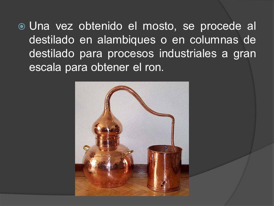 Una vez obtenido el mosto, se procede al destilado en alambiques o en columnas de destilado para procesos industriales a gran escala para obtener el ron.