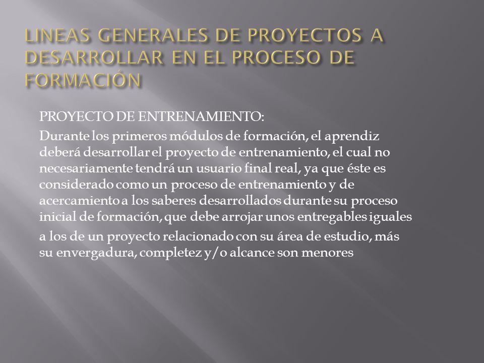 LINEAS GENERALES DE PROYECTOS A DESARROLLAR EN EL PROCESO DE FORMACIÓN