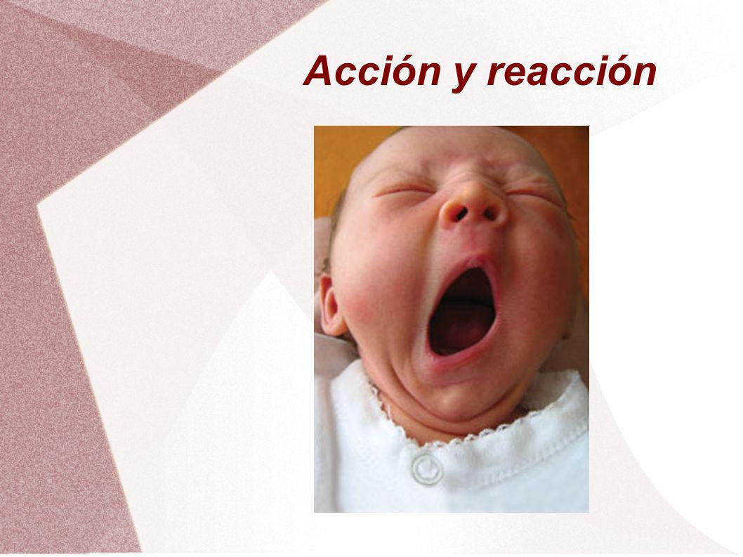 Acción y reacción