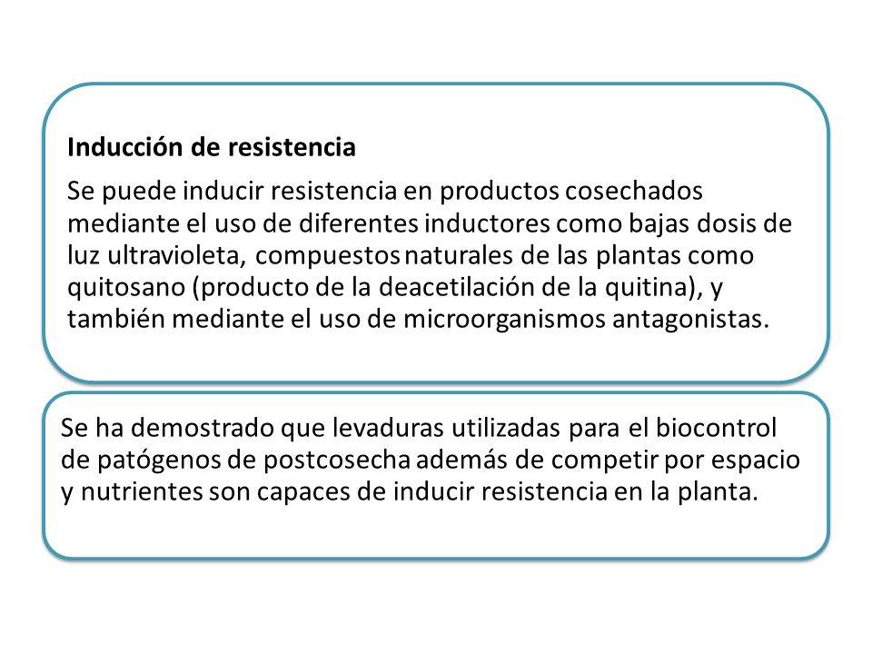 Se puede inducir resistencia en productos cosechados mediante el uso de diferentes inductores como bajas dosis de luz ultravioleta, compuestos naturales de las plantas como quitosano (producto de la deacetilación de la quitina), y también mediante el uso de microorganismos antagonistas.