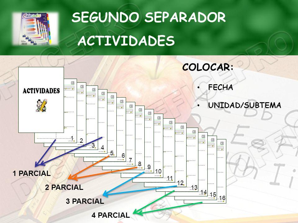 SEGUNDO SEPARADOR ACTIVIDADES