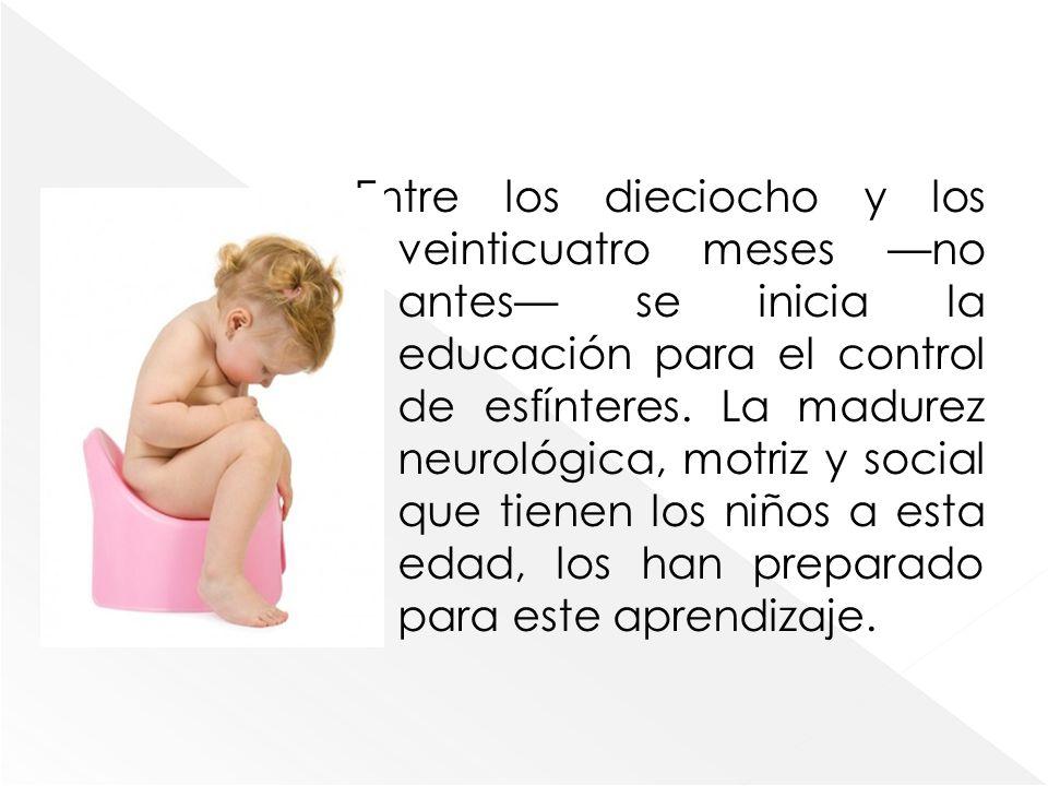 Entre los dieciocho y los veinticuatro meses —no antes— se inicia la educación para el control de esfínteres.