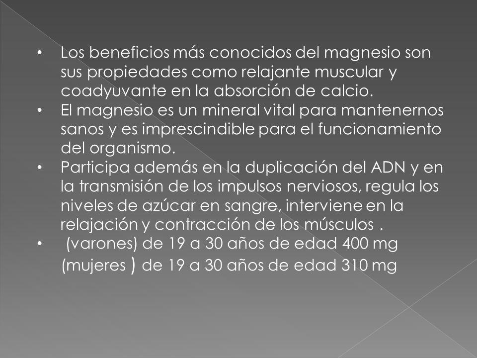 Los beneficios más conocidos del magnesio son sus propiedades como relajante muscular y coadyuvante en la absorción de calcio.