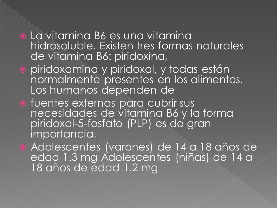 La vitamina B6 es una vitamina hidrosoluble