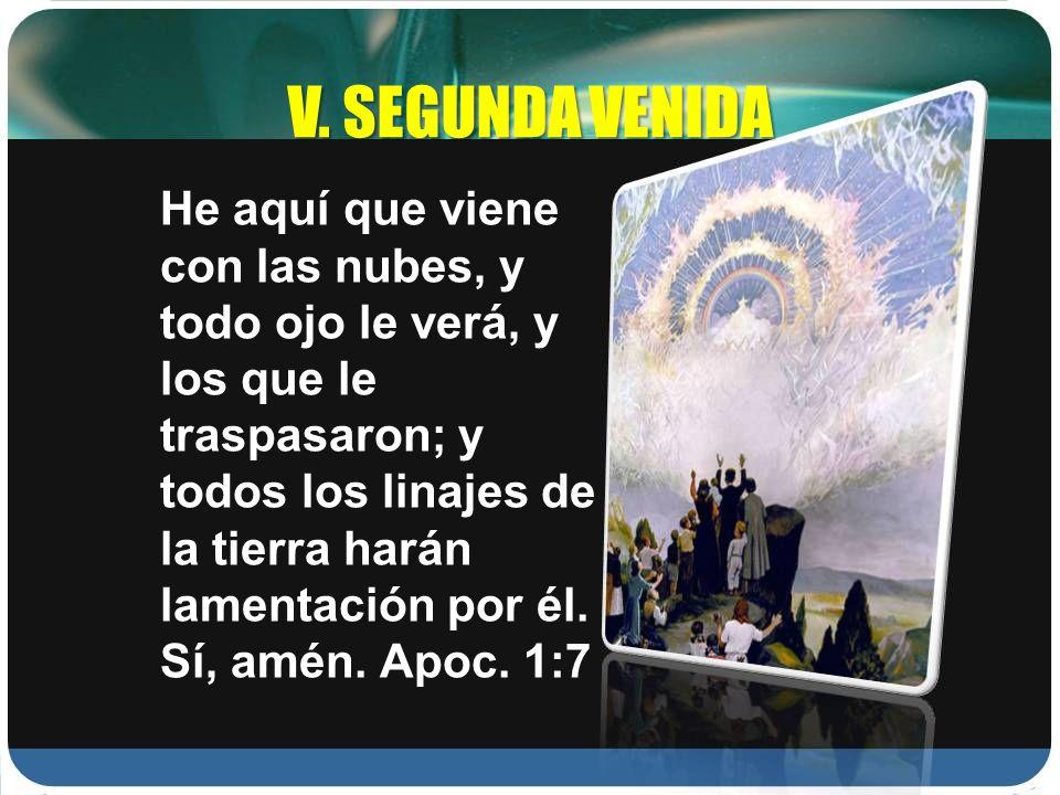 V. SEGUNDA VENIDA