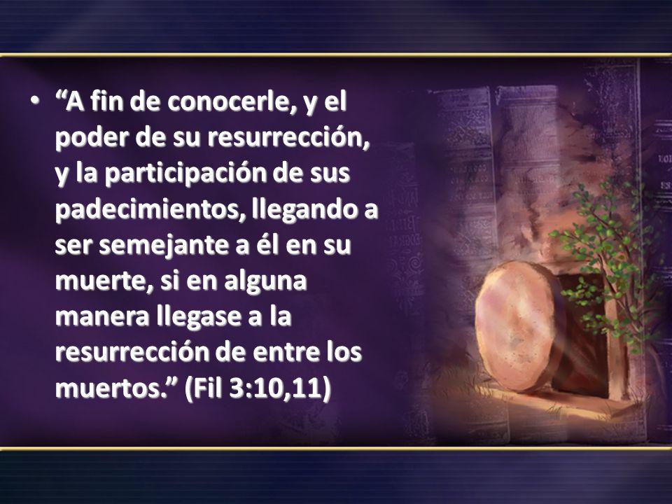 A fin de conocerle, y el poder de su resurrección, y la participación de sus padecimientos, llegando a ser semejante a él en su muerte, si en alguna manera llegase a la resurrección de entre los muertos. (Fil 3:10,11)