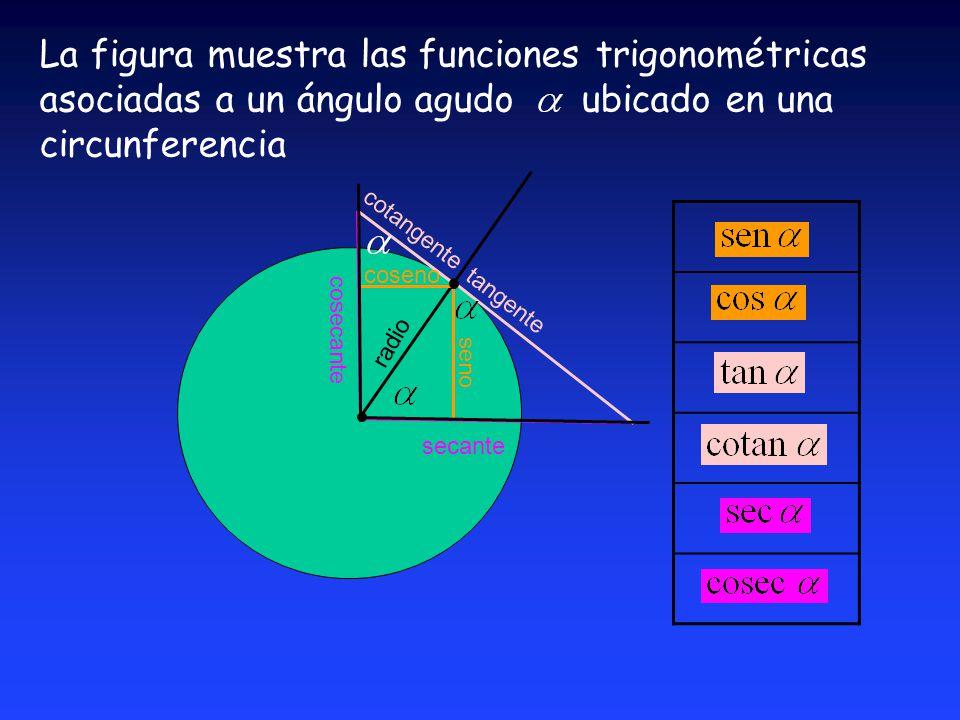 La figura muestra las funciones trigonométricas asociadas a un ángulo agudo ubicado en una circunferencia