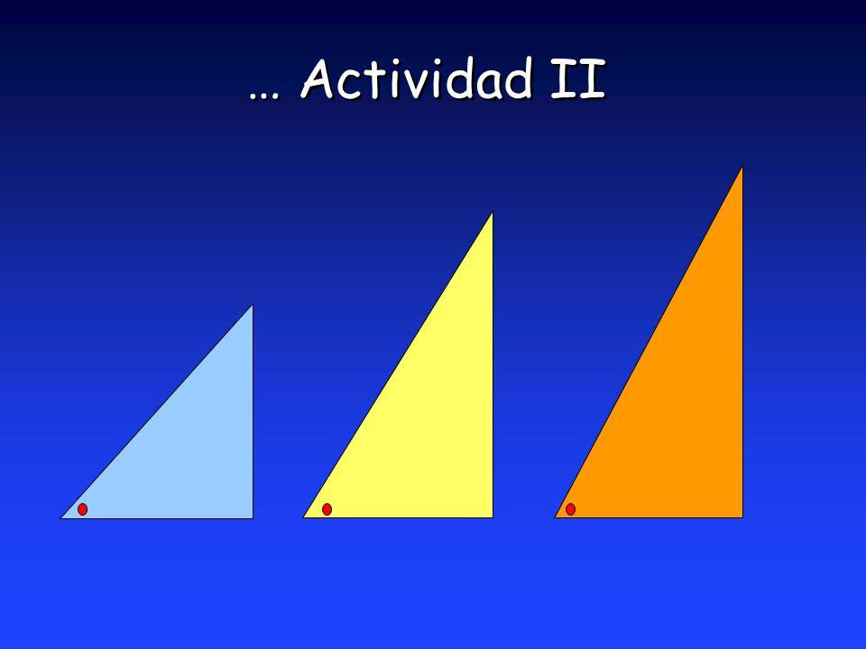 … Actividad II