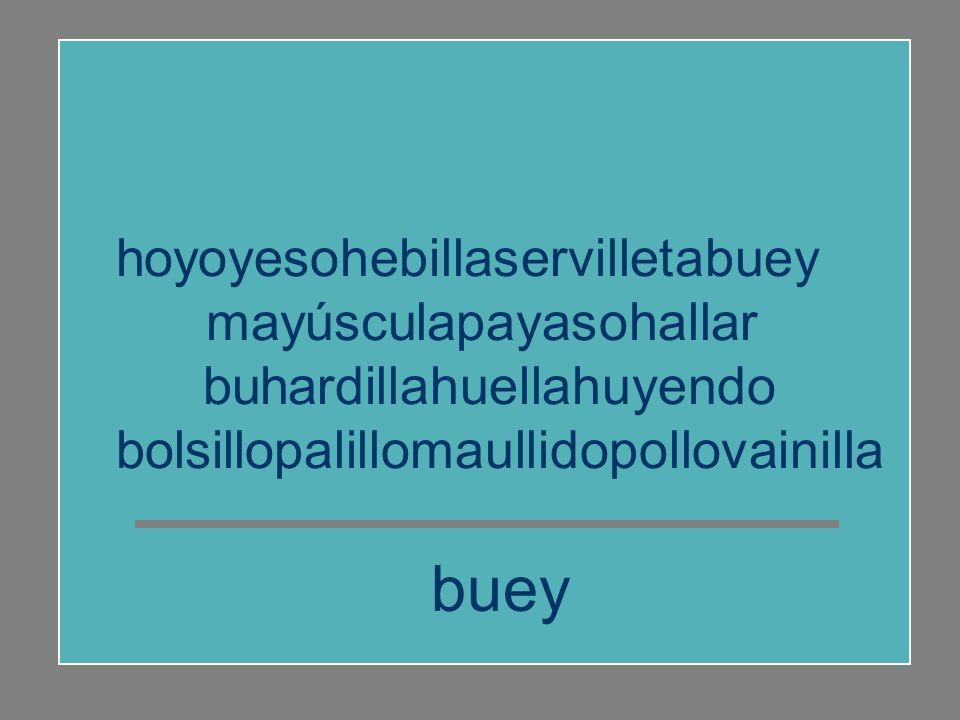 buey hoyoyesohebillaservilletabuey mayúsculapayasohallar