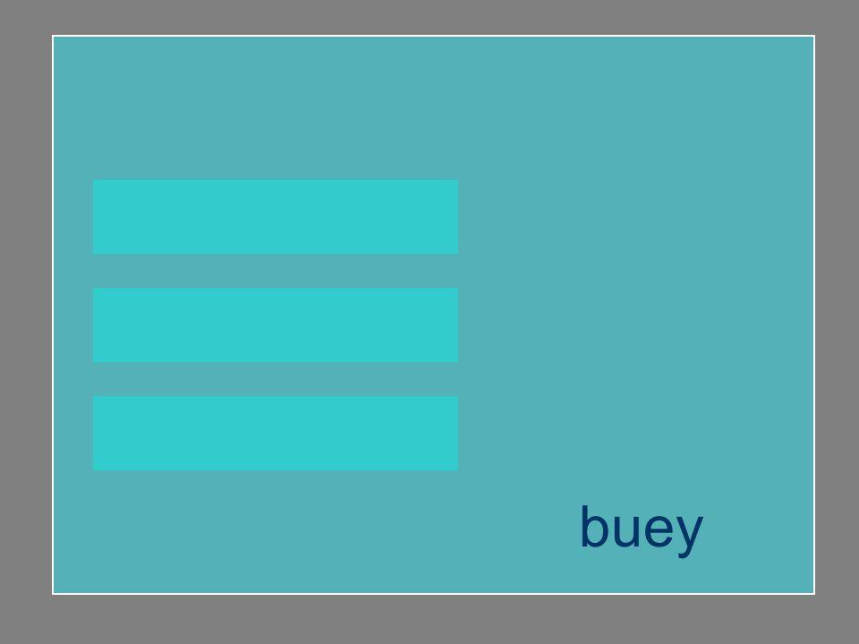 buey buhardilla vainilla buey
