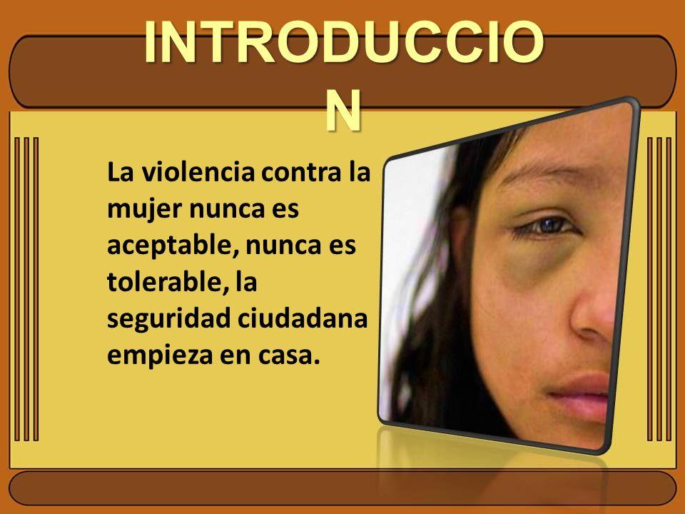 INTRODUCCION La violencia contra la mujer nunca es aceptable, nunca es tolerable, la seguridad ciudadana empieza en casa.