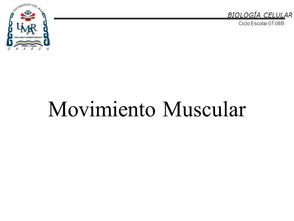 BIOLOGÍA CELULAR Ciclo Escolar 07-08B Movimiento Muscular