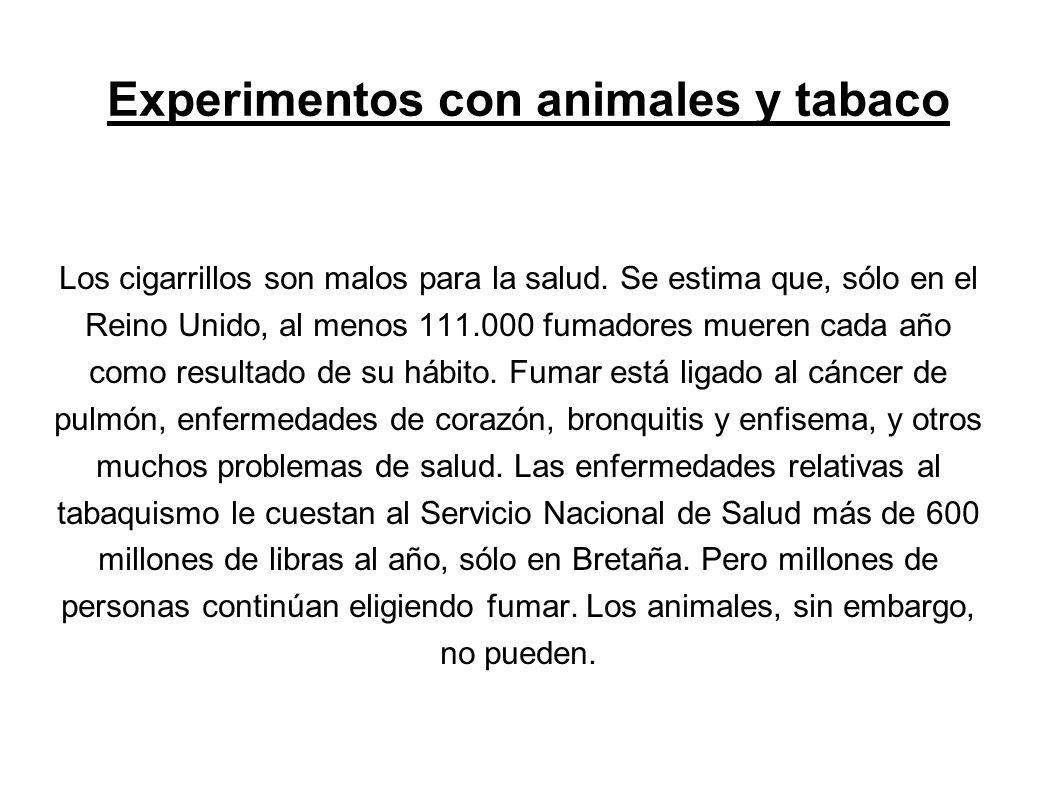 Experimentos con animales y tabaco