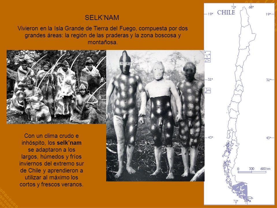 SELK'NAM Vivieron en la Isla Grande de Tierra del Fuego, compuesta por dos grandes áreas: la región de las praderas y la zona boscosa y montañosa.