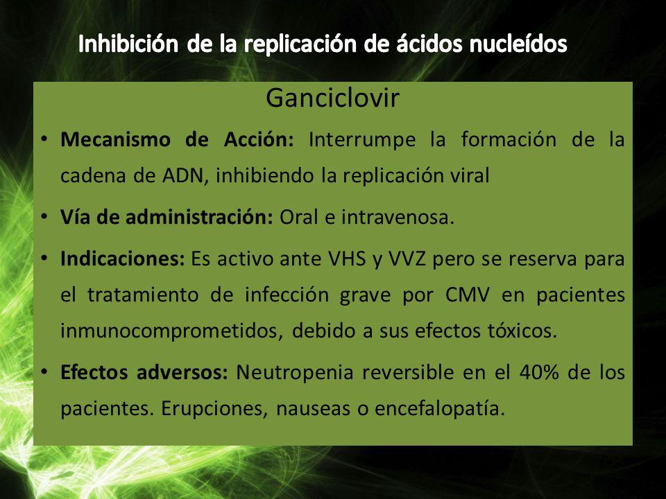 Inhibición de la replicación de ácidos nucleídos