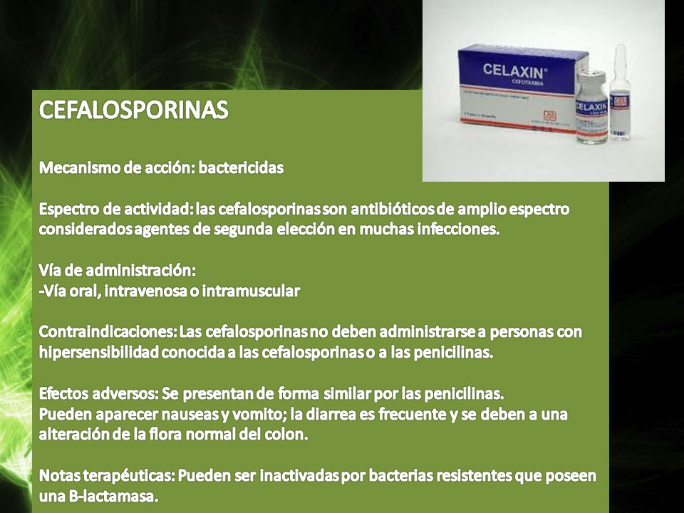 CEFALOSPORINAS Mecanismo de acción: bactericidas