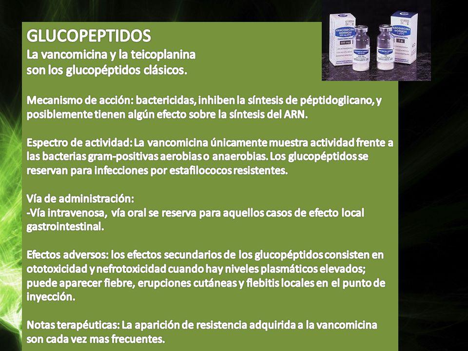 GLUCOPEPTIDOS La vancomicina y la teicoplanina