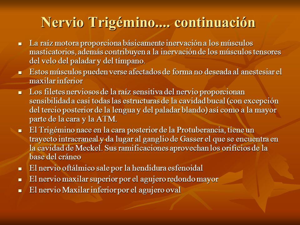 Nervio Trigémino.... continuación