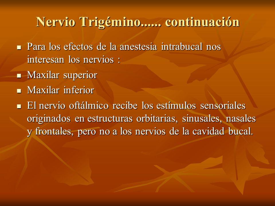 Nervio Trigémino...... continuación