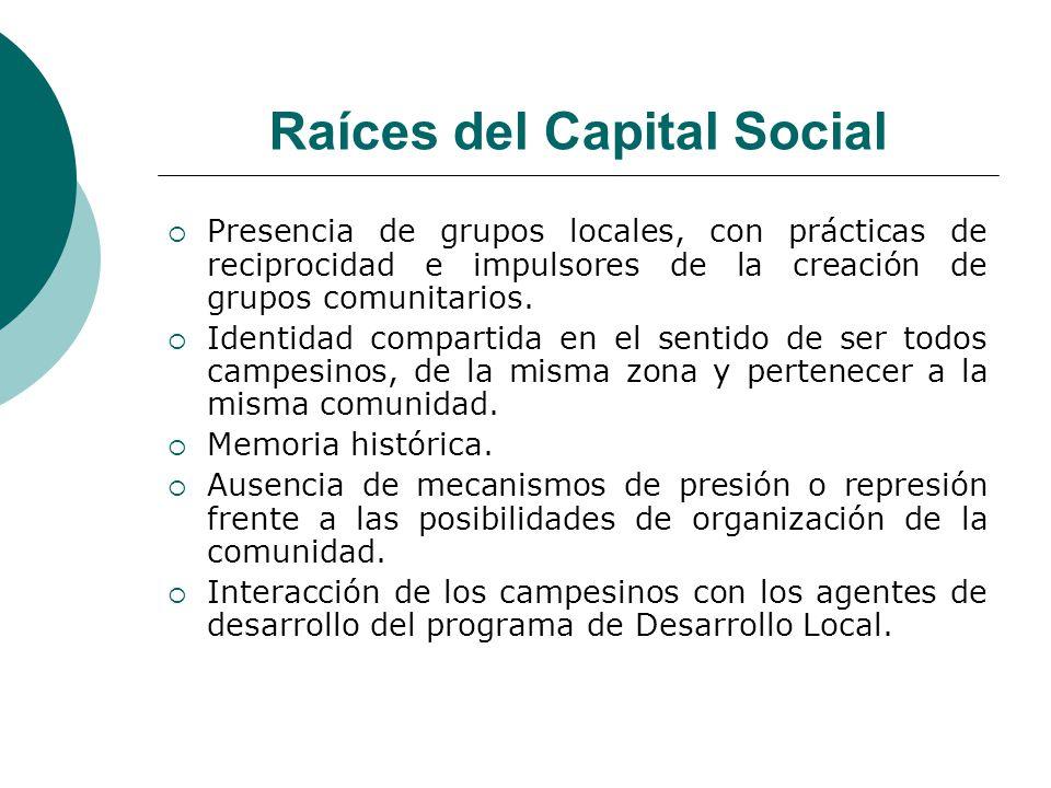 Raíces del Capital Social